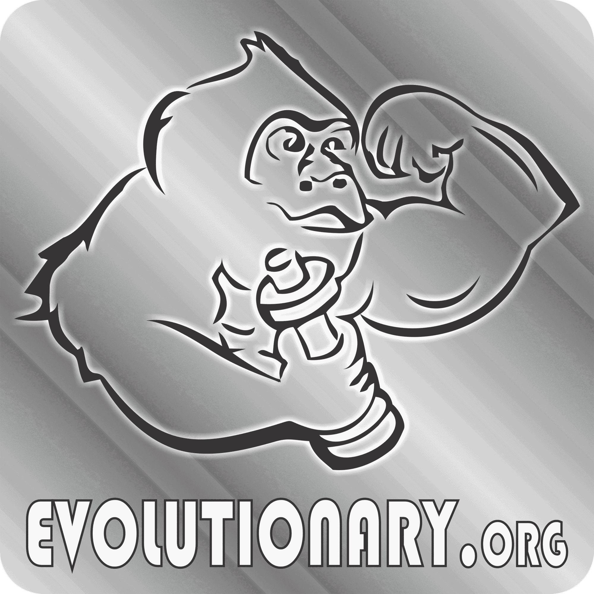 Evolutionary Radio