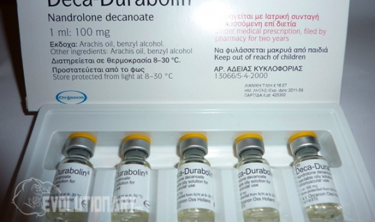 First cycle Deca Durabolin