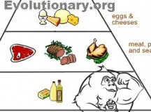 The Evolutionary Diet
