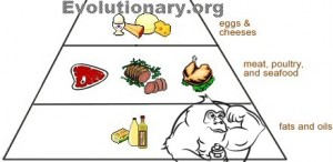 evolutionary diet food pyramid