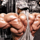 Top Bodybuilders