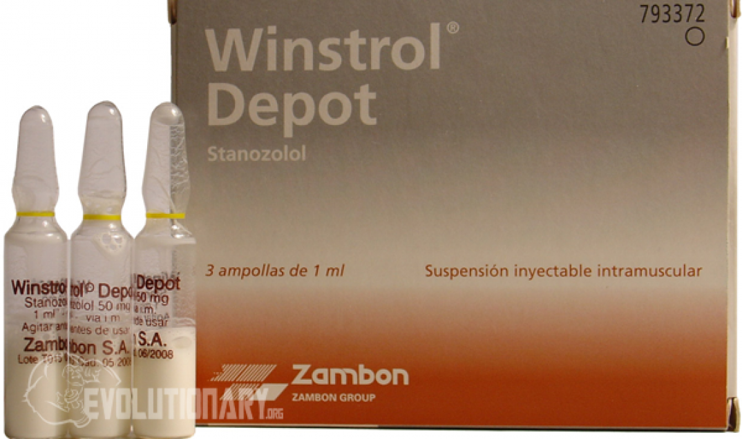 What is Winstrol (Stanozolol)? - Evolutionary org
