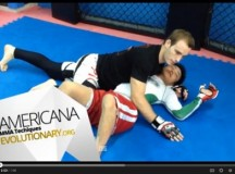 MMA Americana Tutorial