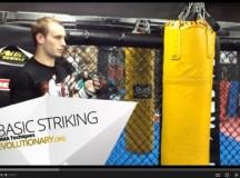 MMA Basic Striking Tutorial