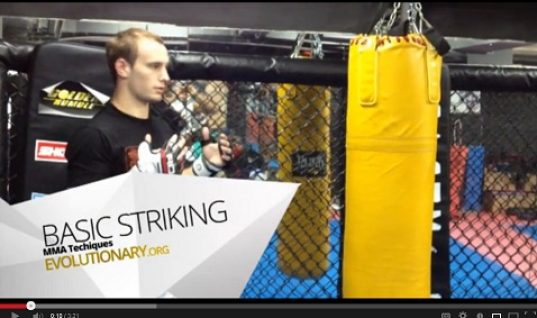 basic striking mma