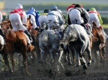 Nine Trainers Cleared Of Doping Charges