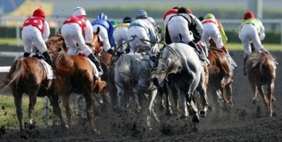 horseracing doping