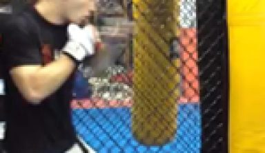 MMA Basic Striking Guide