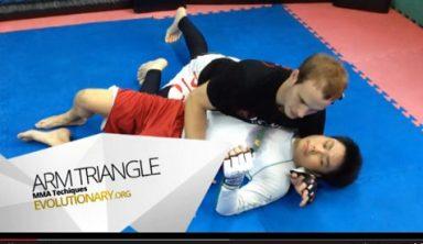 triangle choke