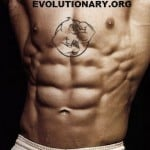 6week cycle bodybuilder