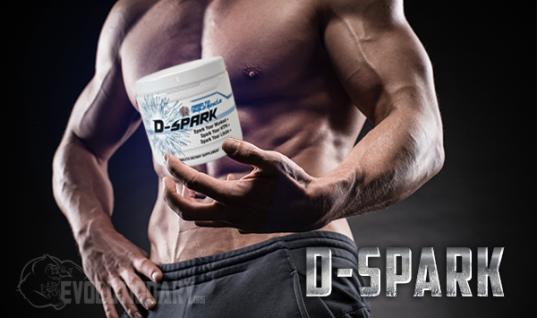 Why I LOVE D-Spark