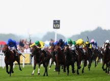 Doping Problem In Horseracing Denied By Trainers