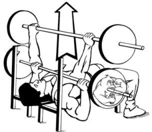 bridge cycles steroids