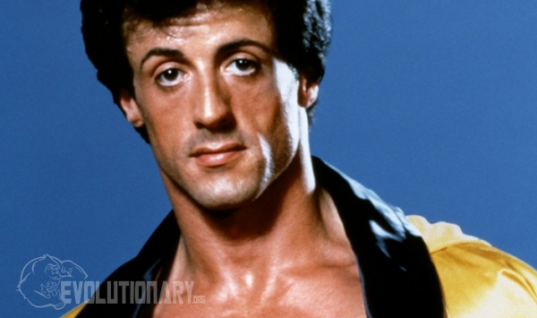 Sylvester Stallone Steroid Cycle