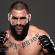 Top 10 MMA Heavyweight fighters