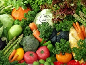 raw food diet selection