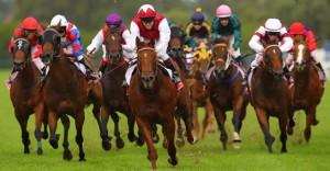 Jockey Club Could Seek Federal Control Of Race Medications