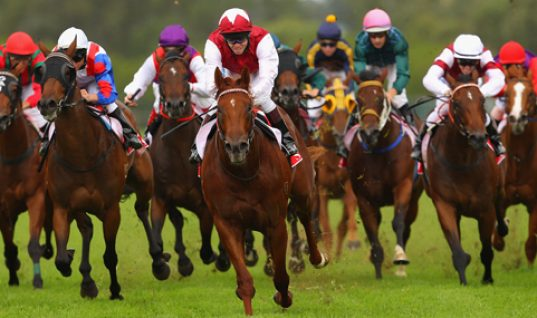 Jockey Club Could Seek Federal Control Of Race Medications