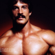Mike Mentzer Steroids Cycle