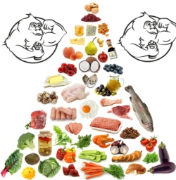 6 pack abs meal plan - Evolutionary.org