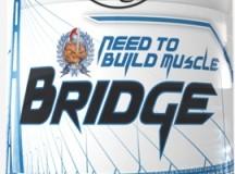 Fig 2. Bridge by N2BM