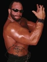 randy savage body