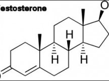 Fig 1. Testosterone Chemical Structure