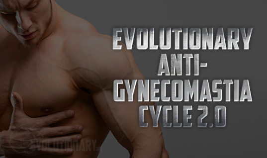 Evolutionary Anti-Gynecomastia Cycle V2