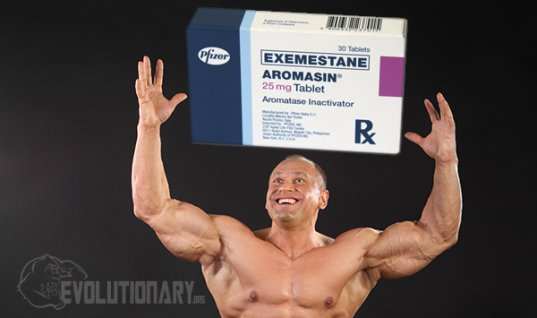 Exemestane (Aromasin) in Bodybuilding
