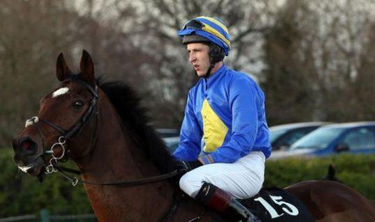 Jockey Eddie O'Connell