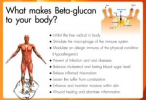 beta glucan steroids