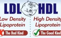 Fig 1. LDL vs. HDL