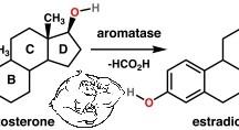 Fig 2. Aromatase Enzyme