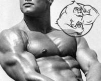 Steve Reeves Steroid Cycle