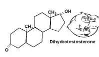 dihydrotestosterone dht chemical structure