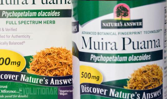 Muira Puama (Ptychopetalum)