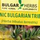 Bulgarian-Tribulus-Terrestris