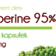 Piperine Explained