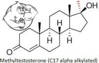 methyl testosterone