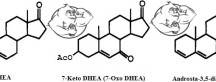 Fig 1. 7-keto-DHEA vs Androsta chemical structure