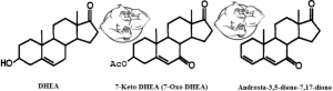 7-keto-dhea vs Androsta chemical structure