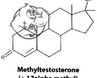 Fig 1. Methyl Testosterone (17aa)
