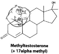methyl testosterone 17alpha alkylation