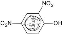 2-4-dinitrophenol dnp