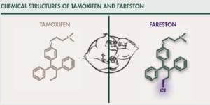 Toremifene Citrate (Fareston) - Evolutionary.org