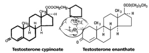 Testosterone esters