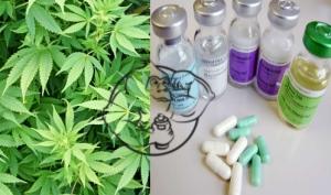 marijuana steroids