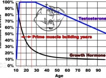 Fig 1. Testosterone levels with Age