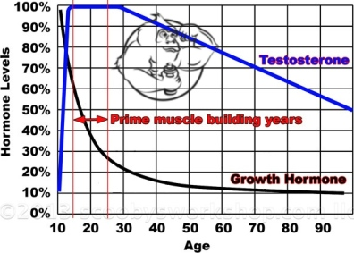 testosterone age