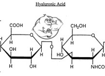 Fig 1. Hyaluronic acid